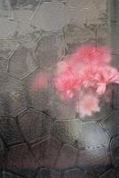 http://hebiinu.com/files/gimgs/th-20_20_no1-naroshima-vindue-09-0183.jpg