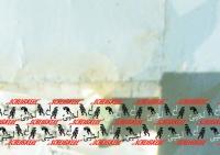 http://hebiinu.com/files/gimgs/th-55_55_wwwungarn1.jpg